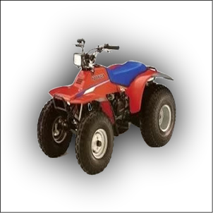 Honda TRX 125 Manual