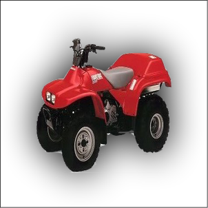 Honda TRX 200 Manual