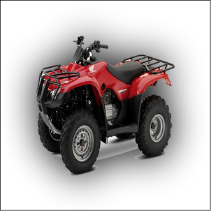 Honda TRX 300 Manual