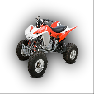 Honda TRX 400 Manual
