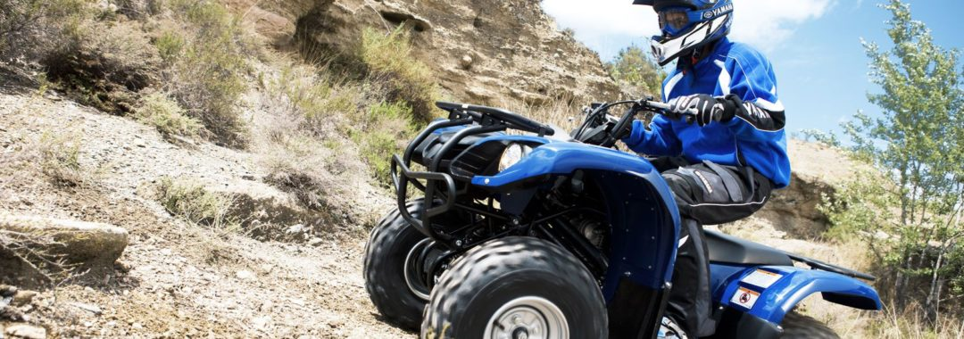 Yamaha Grizzly 350 Repair Manual