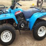 Yamaha Big Bear 350 Repair Manual